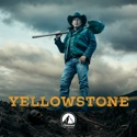 Yellowstone, Season 3 hd download