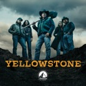 Yellowstone, Seasons 1-3 hd download