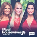 The Real Housewives of Dallas, Season 4 hd download