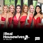 The Real Housewives of Dallas, Season 5