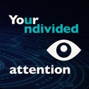 Your Undivided Attention podcast
