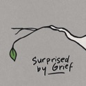Surprised by Grief podcast