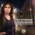 Law & Order: SVU (Special Victims Unit), Season 22 hd download