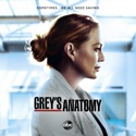 Grey's Anatomy, Season 17 hd download