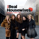 The Real Housewives of New York City, Season 1 hd download